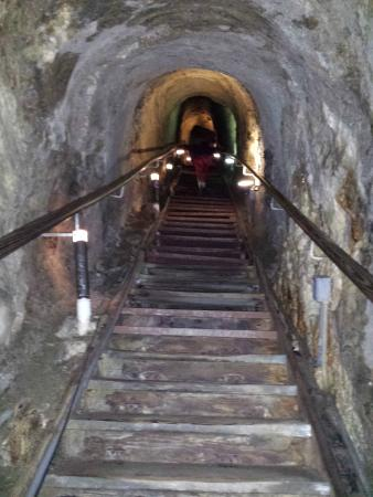 The Cave Store: Stairs up