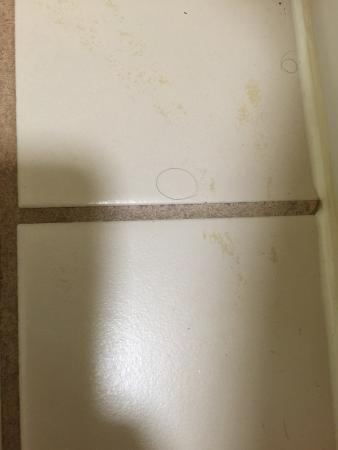 Quality Inn Duluth : photo4.jpg