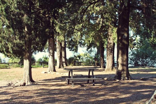 El Palmar National Park, Argentinien: Zona de camping
