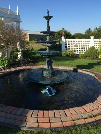 Plaza Motor Motel : Plaze Motor Motel garden