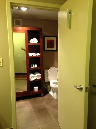 Wyndham Hamilton Park Hotel and Conference Center: Bathroom