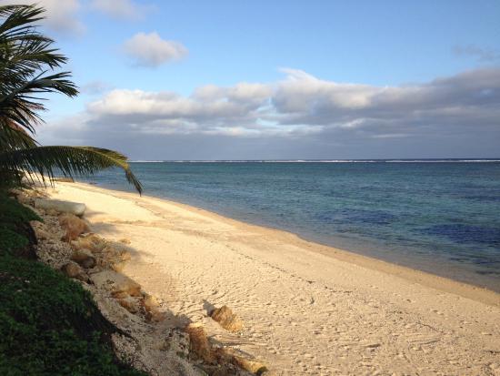 The Crow's Nest: Beach