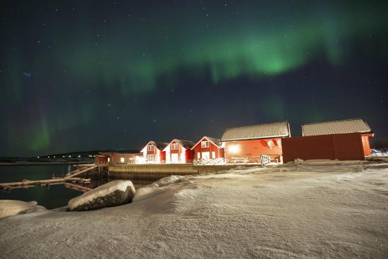 Lyngen Havfiske & Tursenter: casete sotto l'aurora