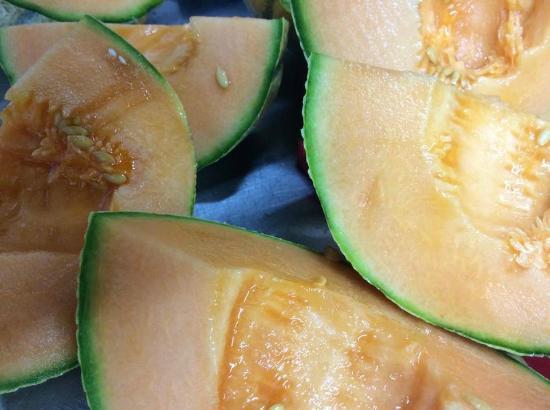 melón cantaloup