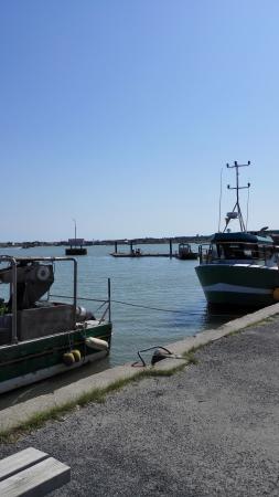 CNPA Bassin de Marennes