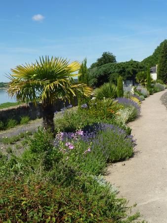 Le Jardin Mediterraneen