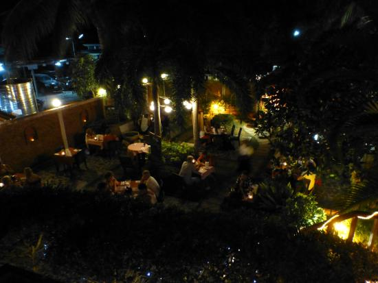 The Frog Wine Cellar & Restaurant: Beautiful view from the terrace over the garden