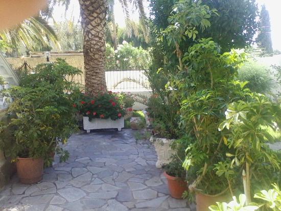 Kapetanios Apartments: Garden