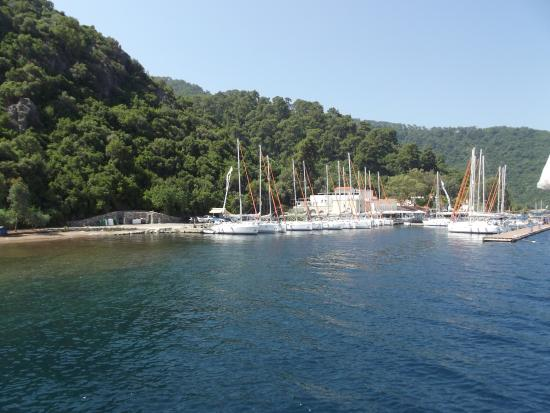 Group Photo - Mega Diana Boat Trip-Tours, Marmaris - TripAdvisor