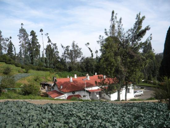 Hotel Mount View: Serene environs ..