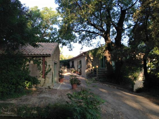 Domaine a L'Aise: View from the driveway