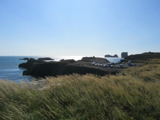 Reynisfjara Black Sand Beach Near Vik Basalt Columns