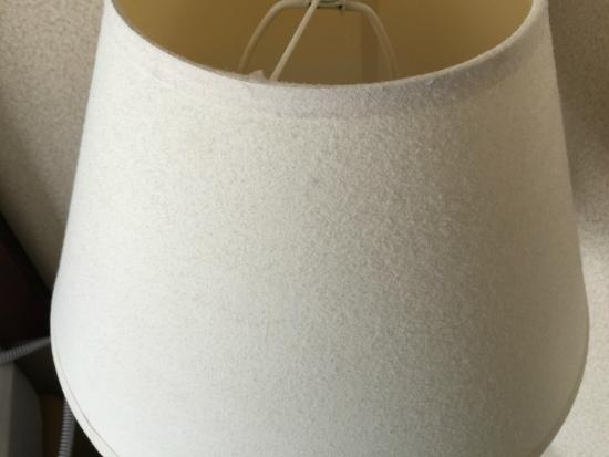 Holiday Inn Express Hotel & Suites Freeport: Extremely dusty lampshade!
