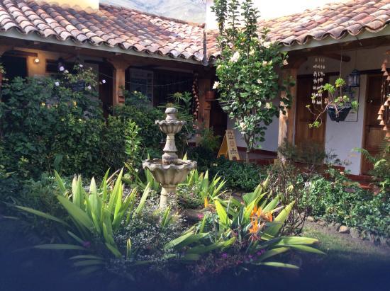 Hostal Renacer: Renacer Hostal's garden