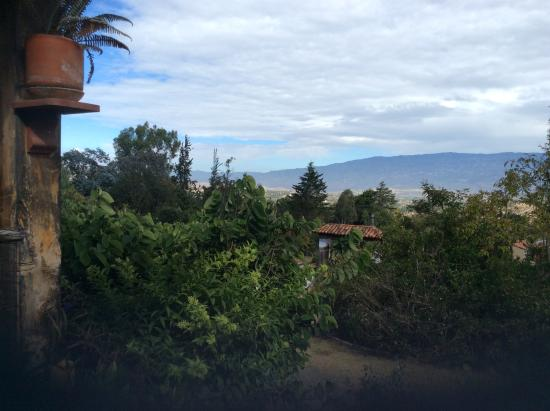 Hostal Renacer: View from the garden