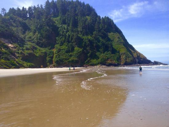 Florence, OR: Trail tunnel and beach scenes