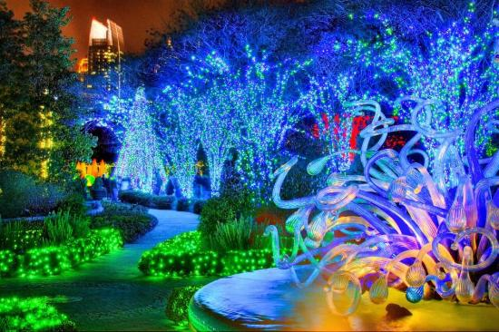 Garden Lights Holiday Atlanta Botanical