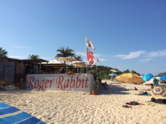 Rabbit beach information