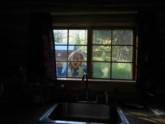 Silver Gate Cabins: View from kitchen window