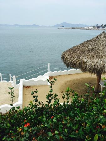 Dolphin Cove Inn: Area de Asoleadero