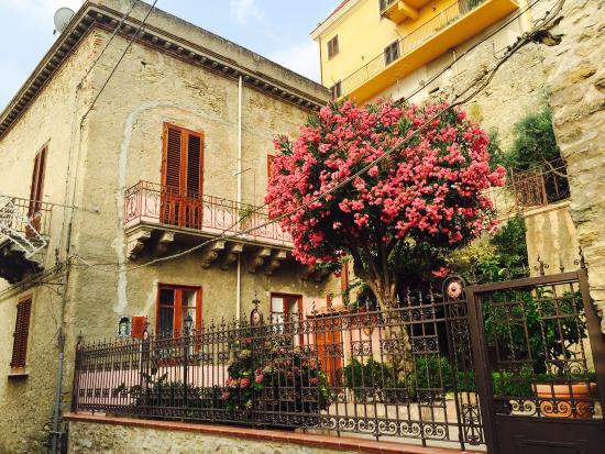 Casa Rubes : La camera delle rose