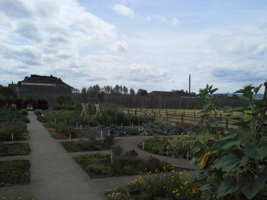 Fort Vancouver National Historic Site: Garden 3