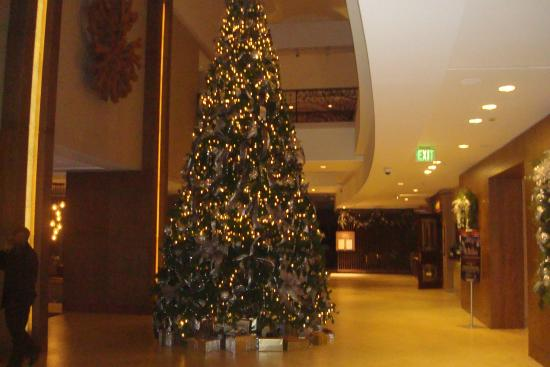 lobby picture of hyatt regency sacramento sacramento tripadvisor rh tripadvisor com