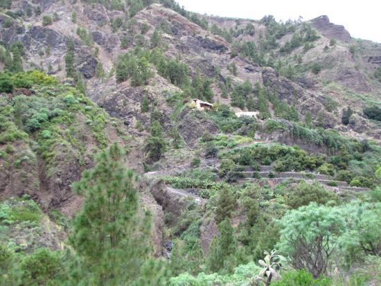 Cascada de los Colores, Barranco de las Angustias: Caldera de Taburiente National Park