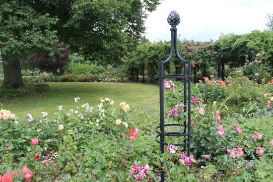 Royal National Rose Society Gardens: Garden