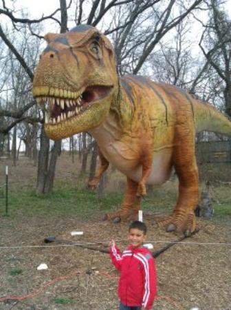 Heard Natural Science Museum & Wildlife Sanctuary : The scariest Dinosaur