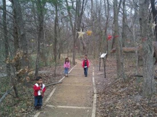 Heard Natural Science Museum & Wildlife Sanctuary : A decorated section of one of the trails.