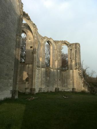 Avon-les-Roches, France : Suprbes ruines