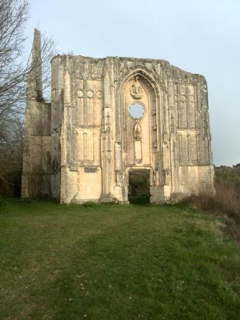 Avon-les-Roches, France : Superbes ruines