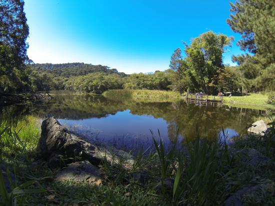 Mairipora, SP: Lago das Carpas - Cantareira