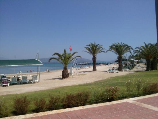 Venosa Beach Resort & Spa: geniş plaj