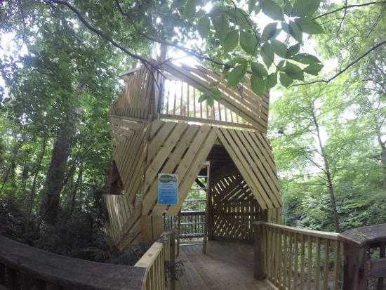 Treehouse Picture Of Cleveland Botanical Garden Cleveland Tripadvisor