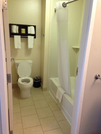 Hampton Inn & Suites Chicago Southland-Matteson: Long suite room 202