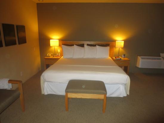 The Chase Hotel of Palm Springs: Big king size bed-room 114