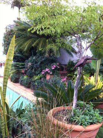 Manaar House: jardim