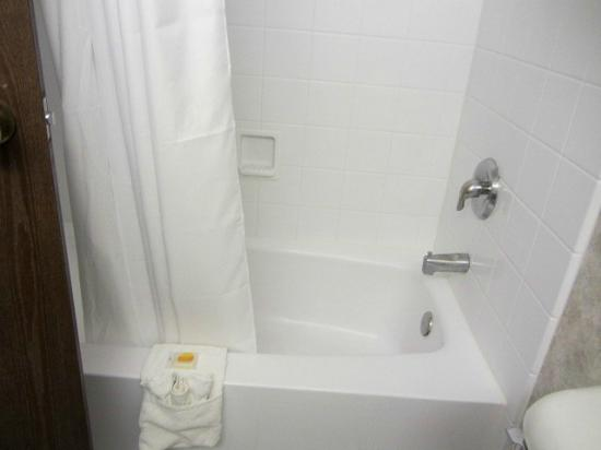 Days Inn La Crosse Conference Center : Tub