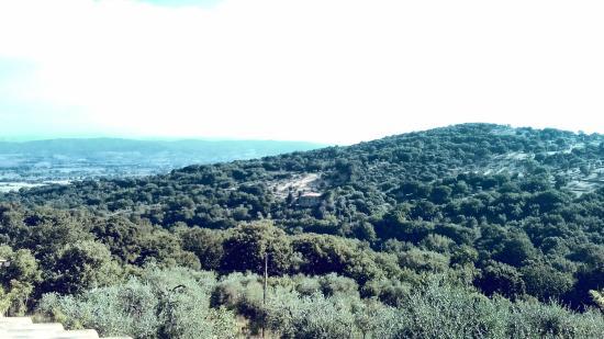Podere San Sebastiano