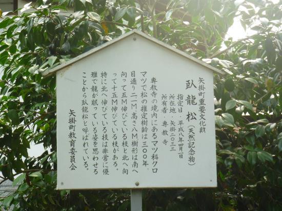 """Yakage-cho, Japan: """"臥龍松""""説明板"""