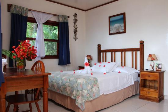 Splash Inn Dive Resort: STANDARD DOUBLE ROOM