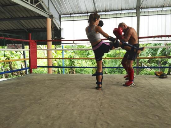 Suwit Muay Thai Training Camp & Gym: photo0.jpg