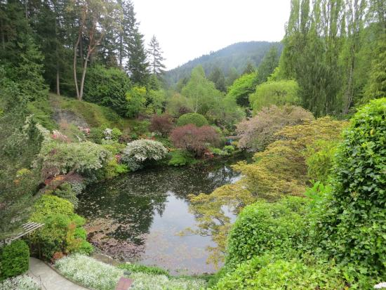 Pond Picture Of Butchart Gardens Central Saanich