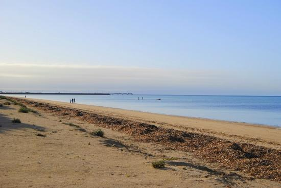 Discovery Parks - Whyalla Foreshore: View of beach beside campsites
