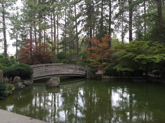 Nishinomiya tsutakawa japanese garden park s bernard for Nishinomiya tsutakawa japanese garden koi