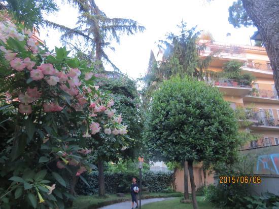 Villa Maria Rosa Molas: Un jardin