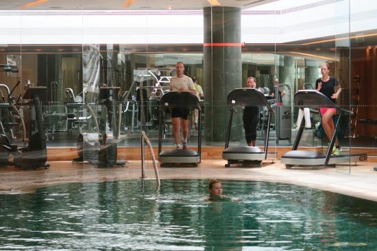 The Gym and pool - Picture of Swissotel Krasnye Holmy Moscow - Tripadvisor