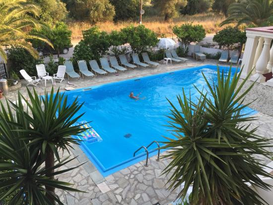 Zwembad Op Balkon : Zwembad vanaf balkon foto van flamingo apartments corfu